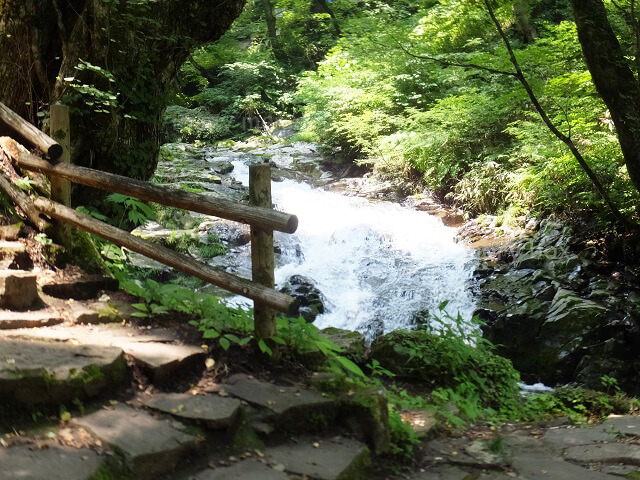 阿弥陀ヶ滝への道3