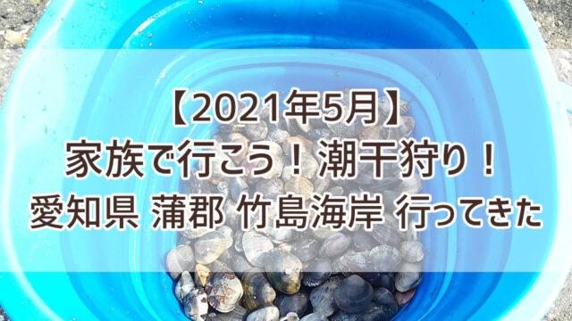 潮干狩り 2021 愛知 蒲郡 竹島海岸 あさり 外遊び
